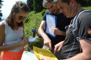 Rigi Adventure Hiking | Trekking Team AG