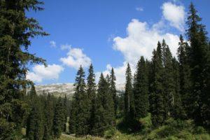 Karst Wanderung | Trekking Team AG